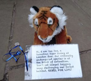 Stuffed tiger not wanting to become extinct